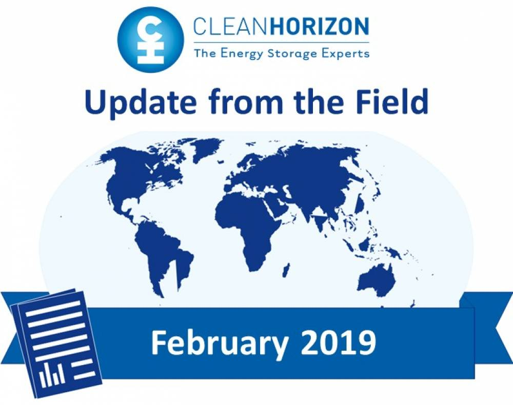 Update From The Field February 2019 : Country forecast for energy storage in 2019
